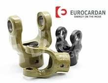 Nos modèles de Machoire Eurocardan